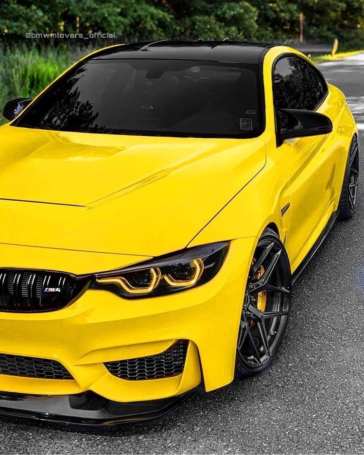Bmw M4, Bmw, Luxury Cars Bmw