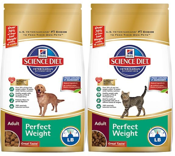 Hill's® Science Diet® Perfect Weight Saved My Pet #perfectweight #sponsored