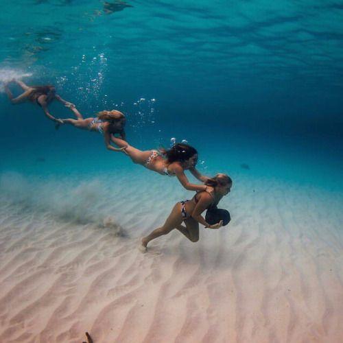 En el mar como en casa =y=