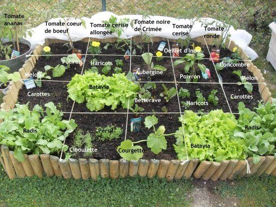 Potager en carré | Carré potager, Design de jardin potager ...