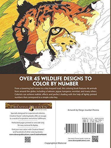 Resultat d\'imatges de Creative Haven Wildlife Color by Number ...