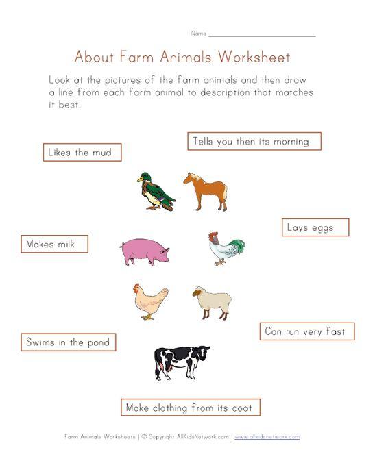 1000+ images about Farm animals unit on Pinterest | A cow, Life ...