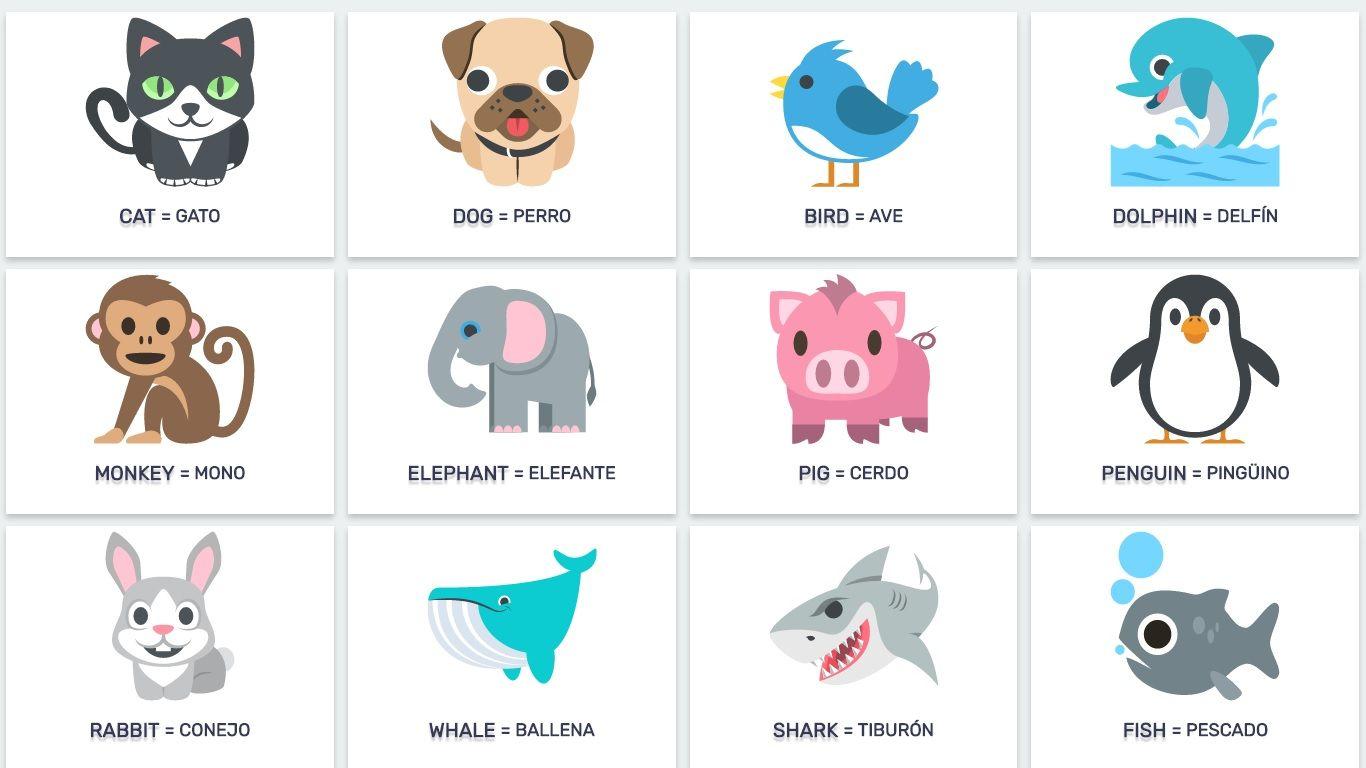 Animales En Ingles La Granja Acuaticos Y Reptiles En Lista Con Ejemplos Basicos Y Avanzados Animal Flashcards Animal Pictures For Kids Animals For Kids
