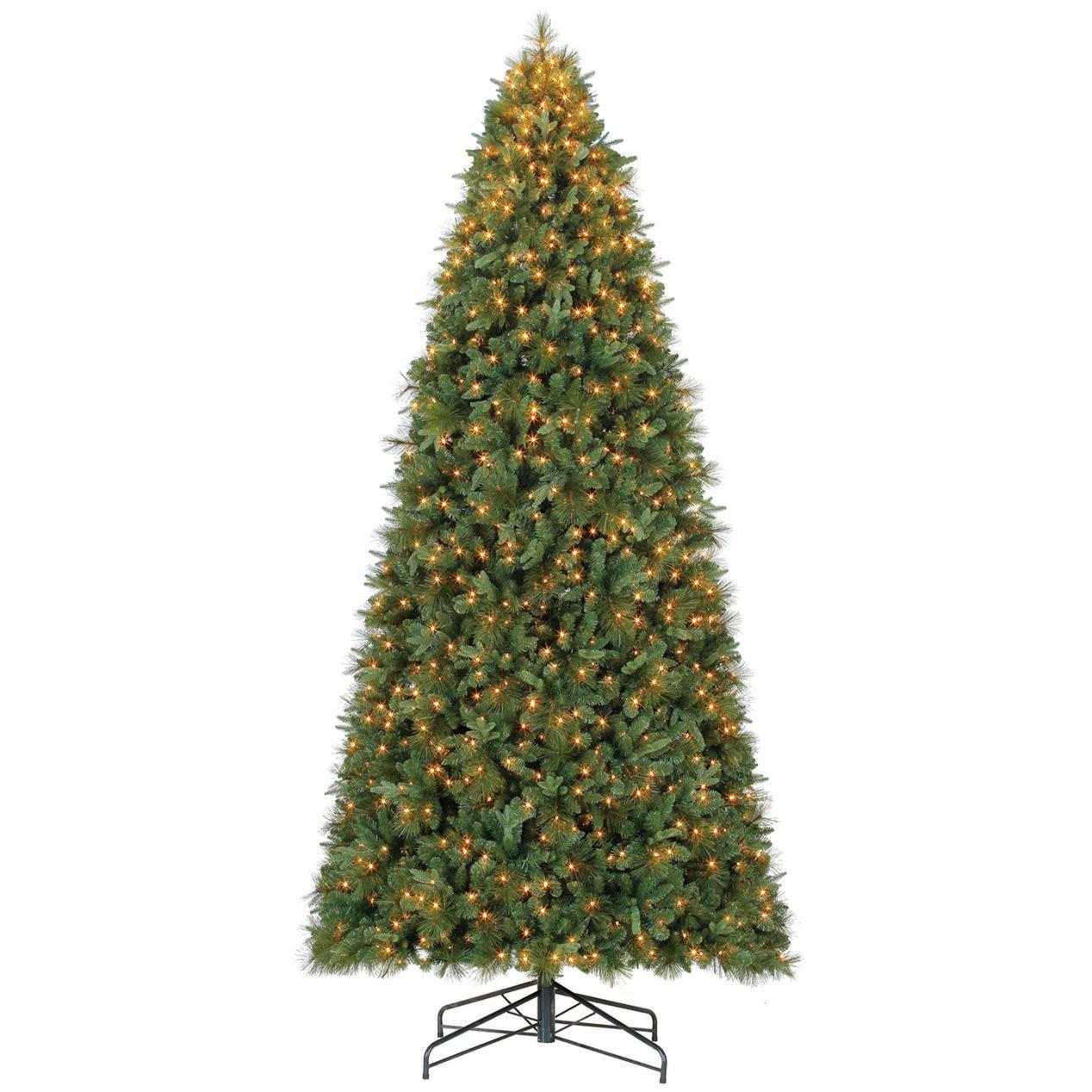 C31 12 Ft Pre Lit Aurora Mixed Needle Christmas Tree Pine Christmas Tree Christmas Tree Classic Christmas Tree