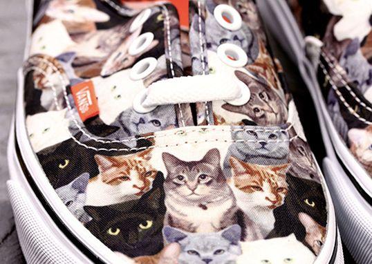 vans gatos