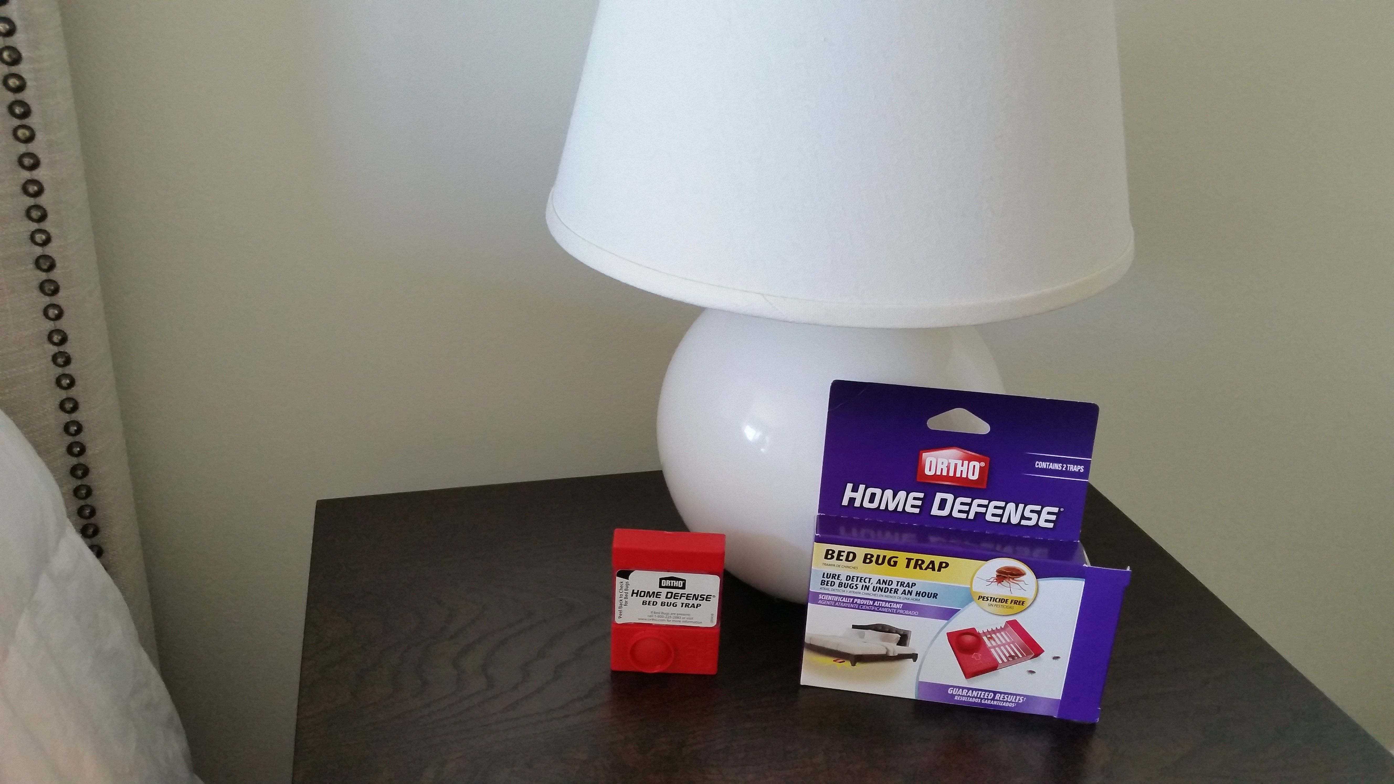 Worried About Bed Bugs? This New Product Can Help Bed