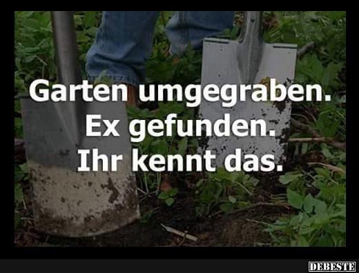 Garten Umgegraben Lustige Bilder Spruche Witze Echt Lustig Lustige Spruche Spruche Lustig
