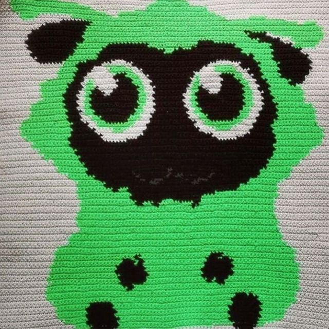 Turn Your Photos Into Graphghans with Wooltasia Crochet App
