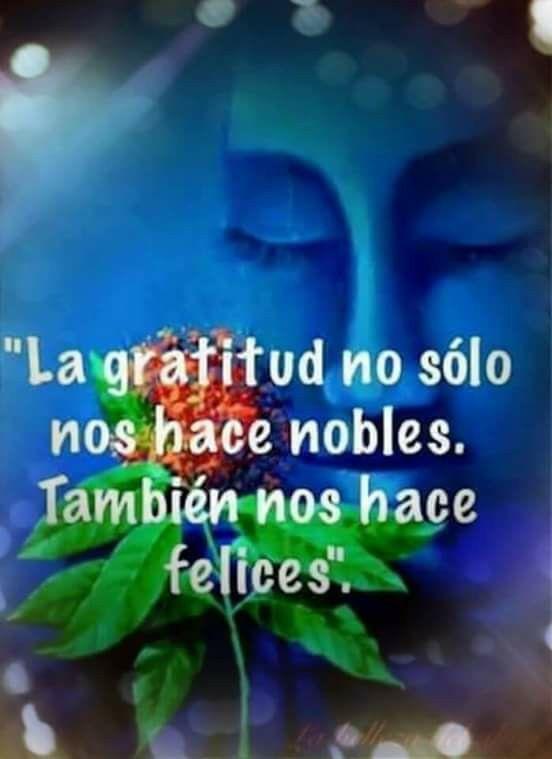Gracias Imagenes De Agradecimiento Frases De Agradecimiento Pensamiento De Agradecimiento