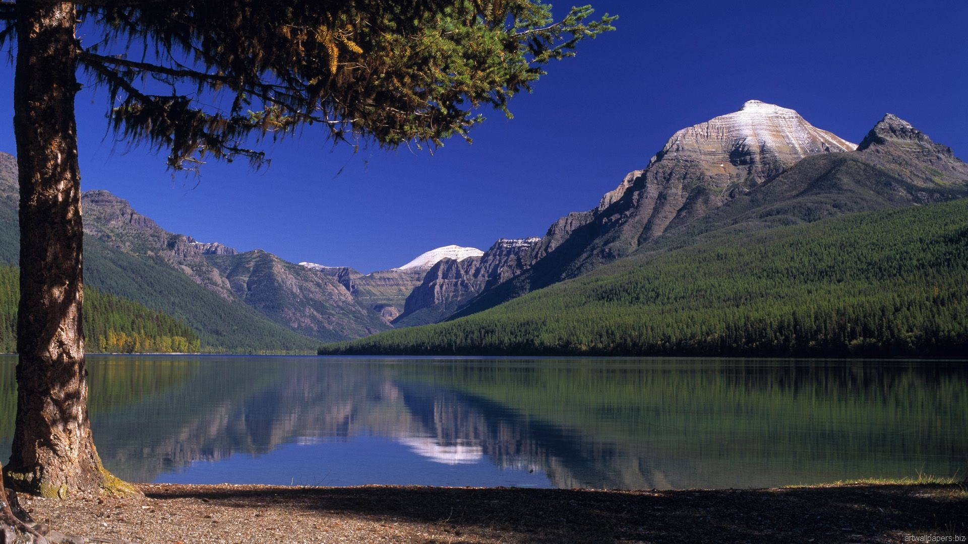 Bowman Lake Glacier National Park Montana Hd Wallpaper Hd