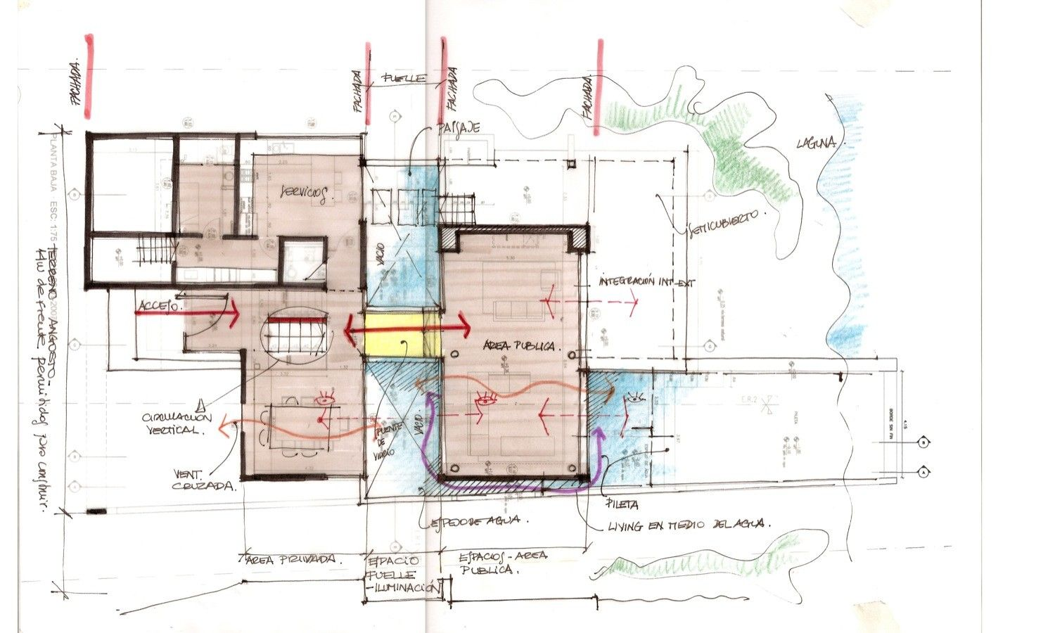 Gallery Of The Black House Andres Remy Arquitectos 29 Plan Sketch Black House House Sketch Plan