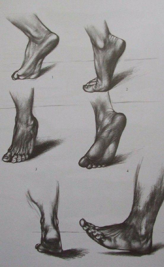 Jenő Barcsay - Művészeti anatómia (~Artistic anatomy) | Bitácora ...