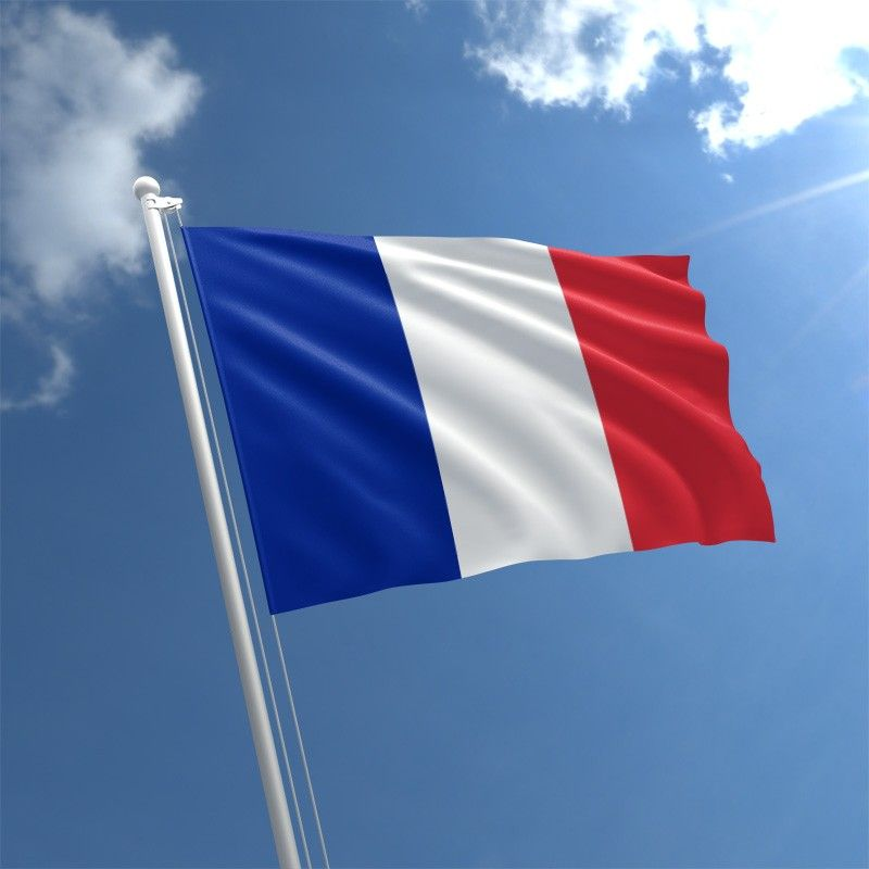 When I Grow Up I Want To Visit France In 2020 French Flag Flag Belgium Flag