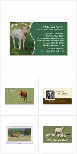 Cattle business cards zazzle products from other designers cattle business cards colourmoves