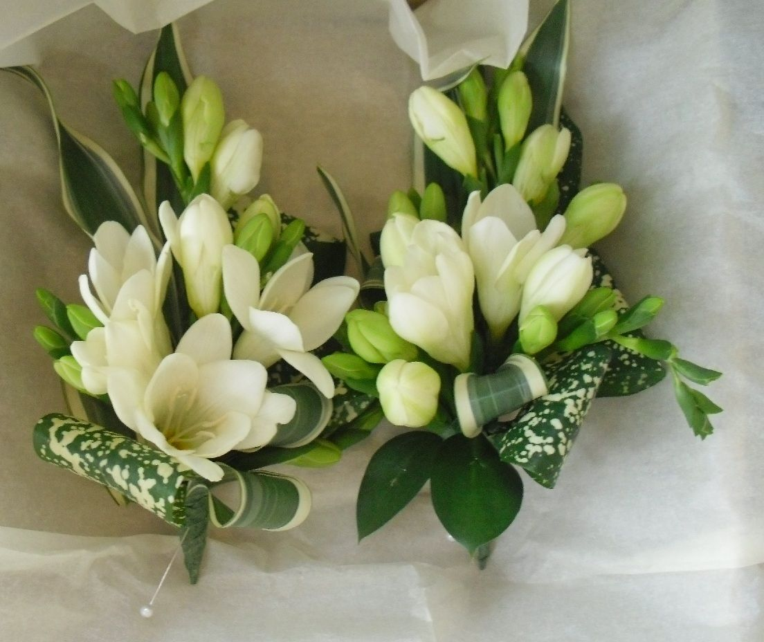 Fresia Are In Season And Common Wedding Flowers Perfect For The Guys Boutonnieres
