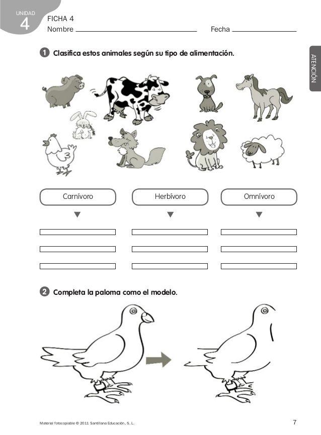 Ficha Animales Herbivoros Carnivoros Y Omnivoros Para Colorear