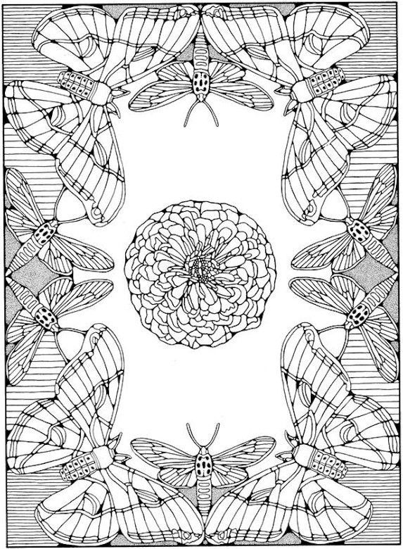 Advanced Coloring Pages For Adults | Advanced Coloring Pages ...