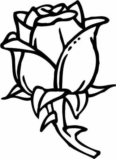 rose coloring pages 11jpg 375513 Pinterest