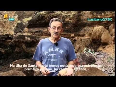 Os Fósseis de Santa Maria, Açores - YouTube Ver também: https://www.publico.pt/ciencia/noticia/a-ilha-de-santa-maria-esta-a-erguerse-do-fundo-do-mar-1751680