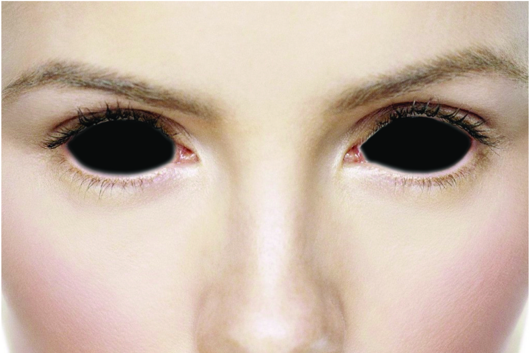 black sclera 22mm full eye covered beauty palette black