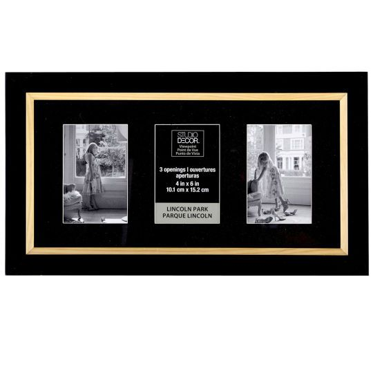 studio décor® viewpoint lincoln park two-tone collage frame (Item ...
