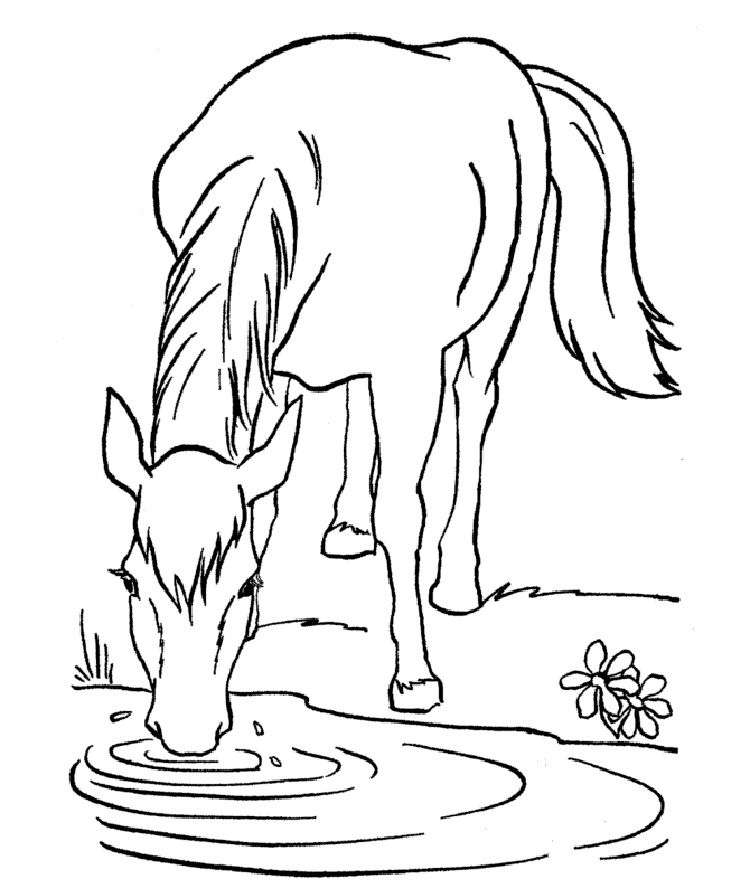 horse coloring pages for free to print | Coloring Ideas