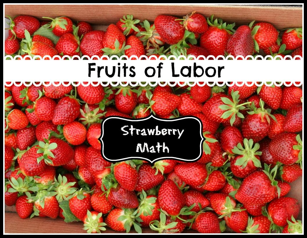 Strawberry Math In The Field Farmingwithkids Gardening
