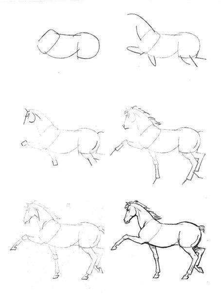 ein pferd zeichnen pferde pferde zeichnen pferde malen und pferde skizze. Black Bedroom Furniture Sets. Home Design Ideas