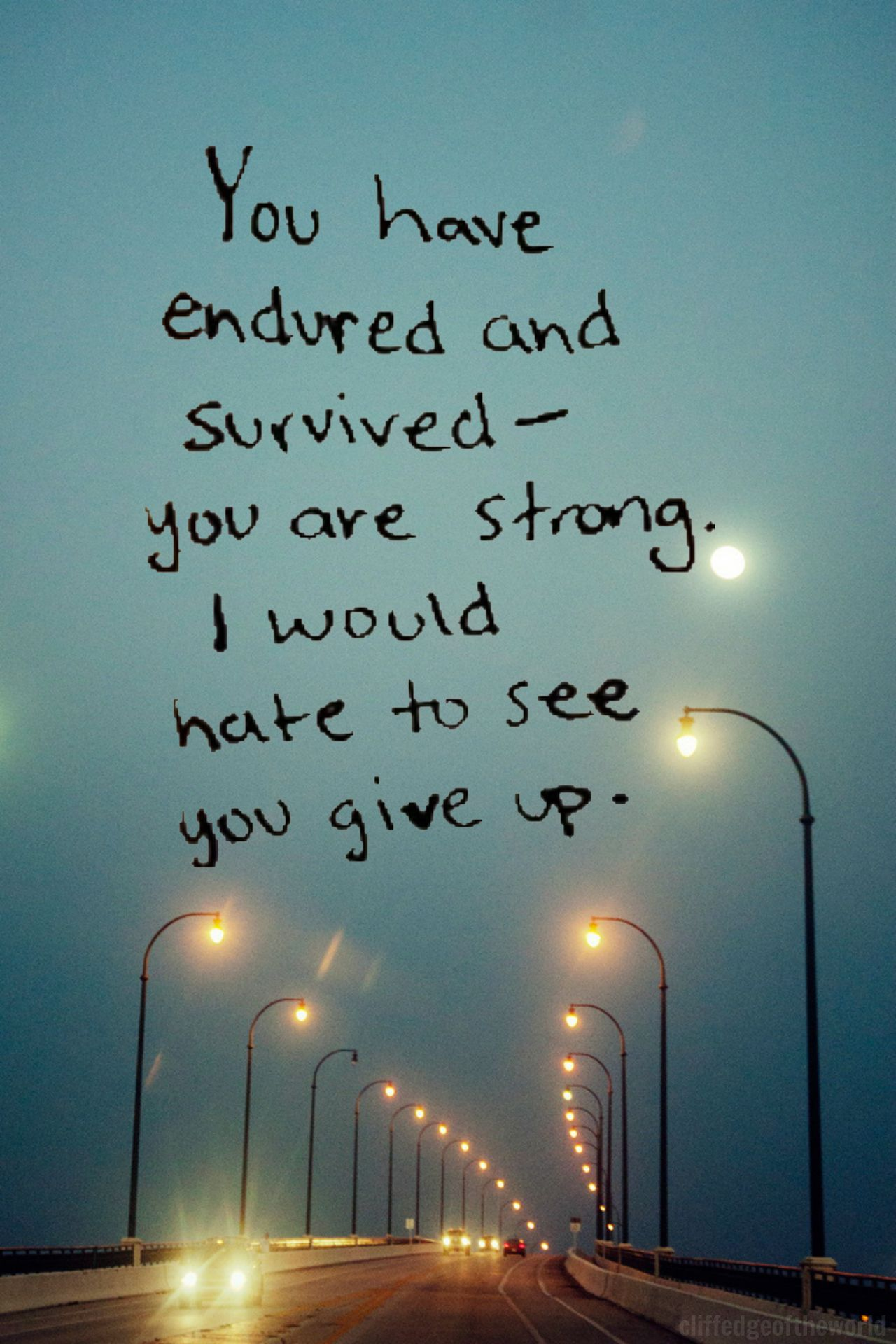 You have endured and survived - you are strong. I would hate to see you give up...
