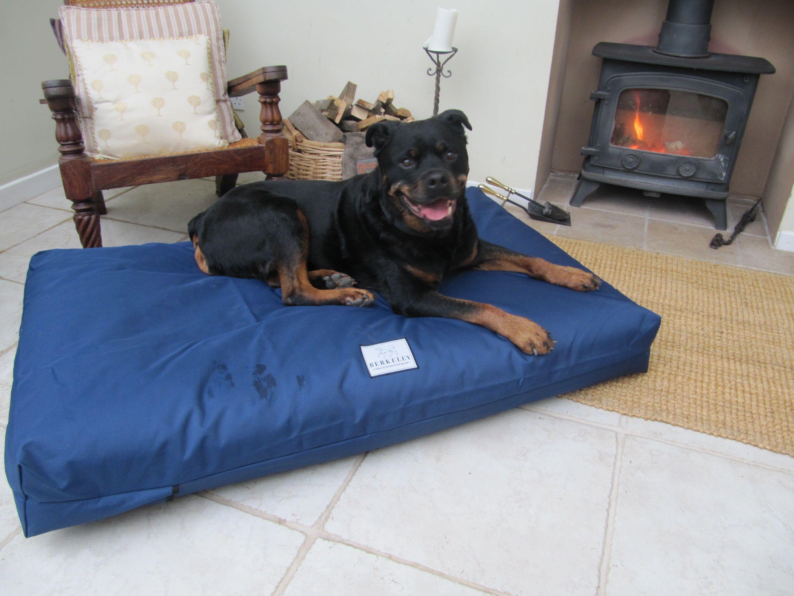 Berkeley XL Waterproof Orthopaedic Dog Bed with Pocket