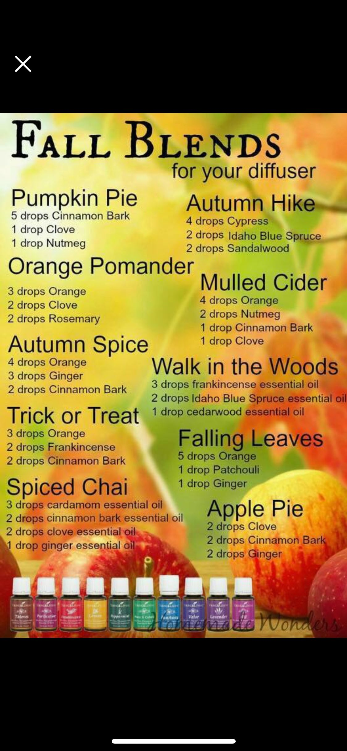 Pin by Marianne Sniezek on Essential oils Fall diffuser