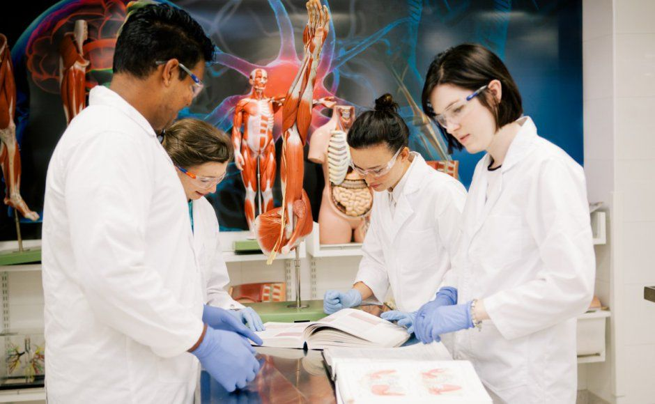 Biomedical science study at uq will set you on the road to