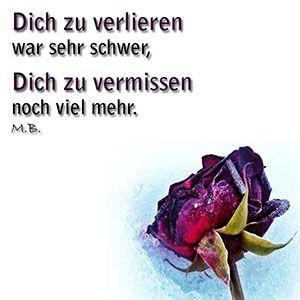 Jede Woche neue Trauersprüche bei Trauer.de #totensonntagzitate