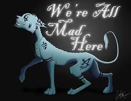 alice in wonderland cat quotes - Google zoeken