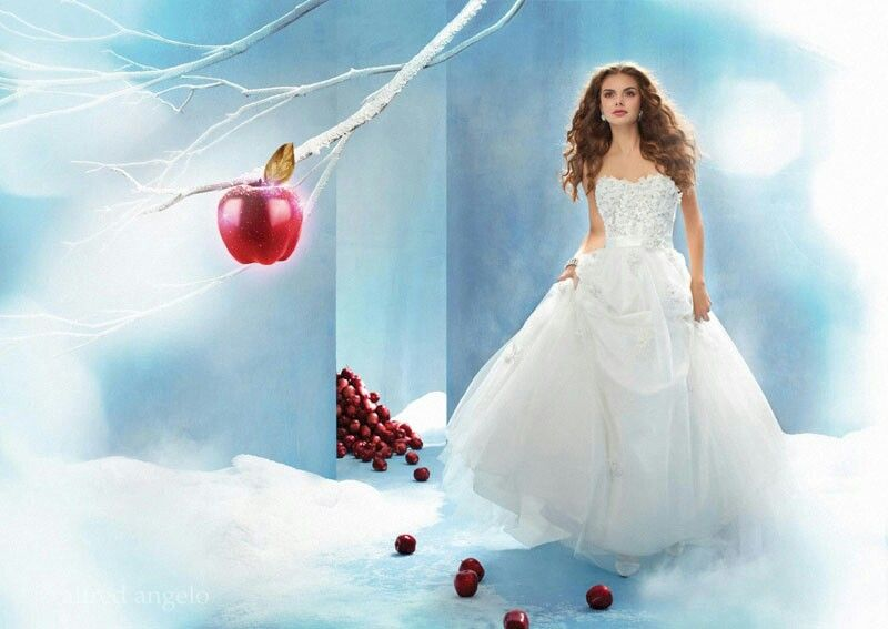 Snow White wedding dress | Disney Inspired Weddings | Pinterest ...