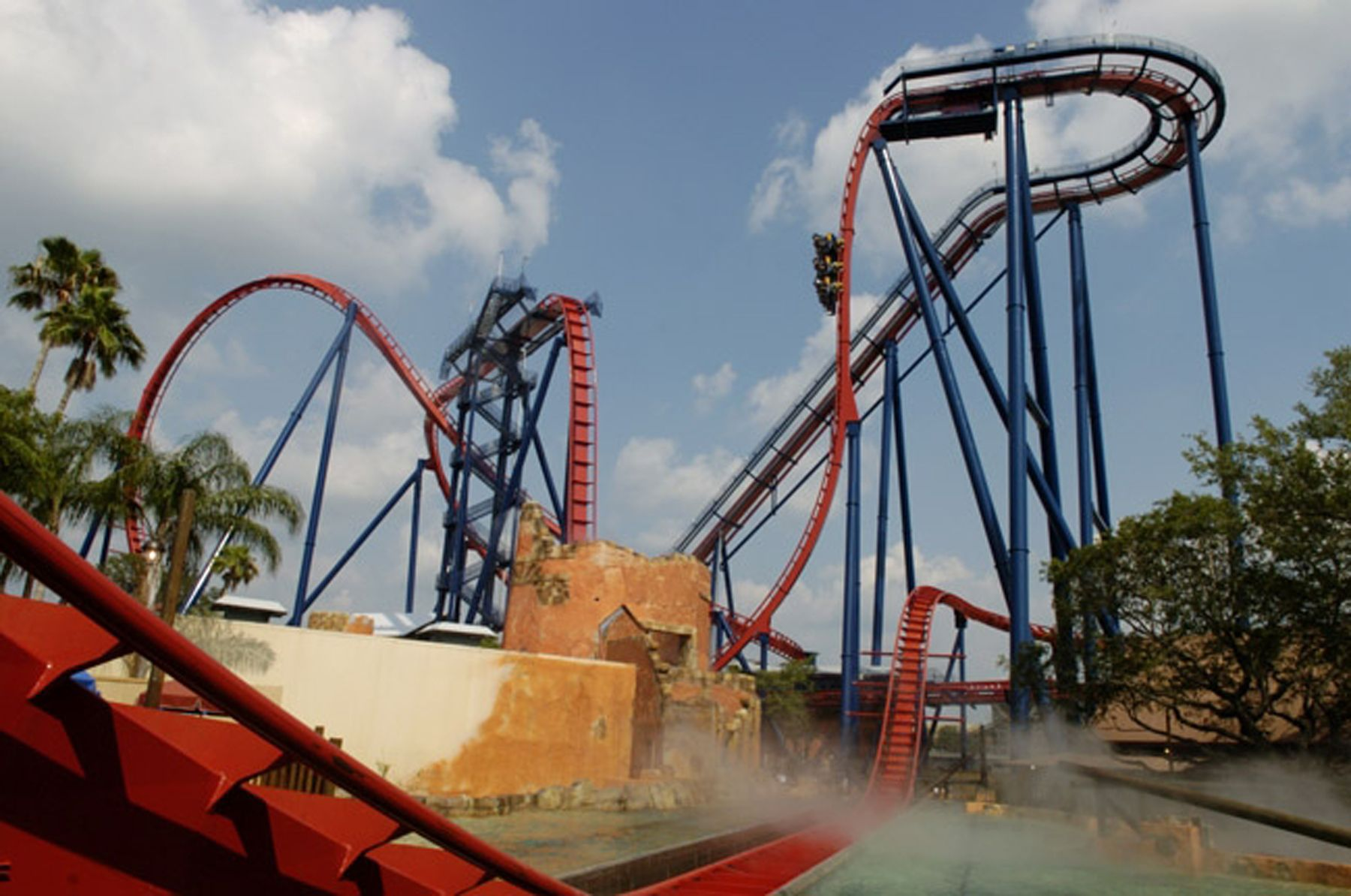 Roler coaster at busch gardens in clearwater fl - Roller coasters at busch gardens ...