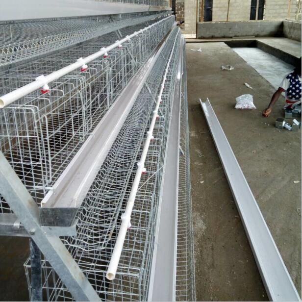 China Supplier Poultry House Design Chicken Cage For Layers In Kenya