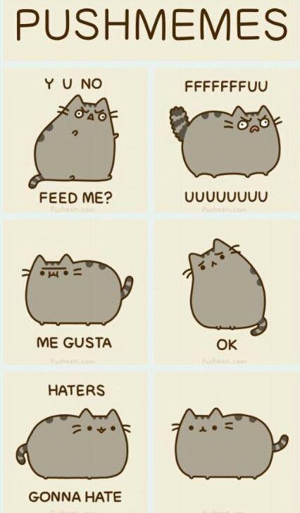 White Black Pusheen Cat Meme And