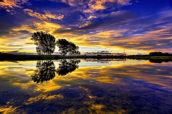 Sunset-10.jpg (570×380)