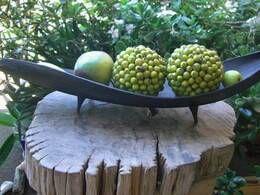 , DIY: Make a Palm Leaf Tea Light Holder, งานฝีมือในการขายบล็อก, งานฝีมือในการขายบล็อก