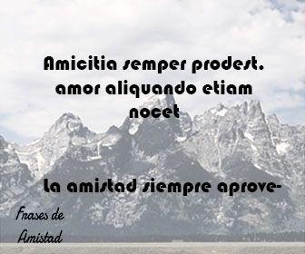 55 Proverbios Y Expresiones En Latín