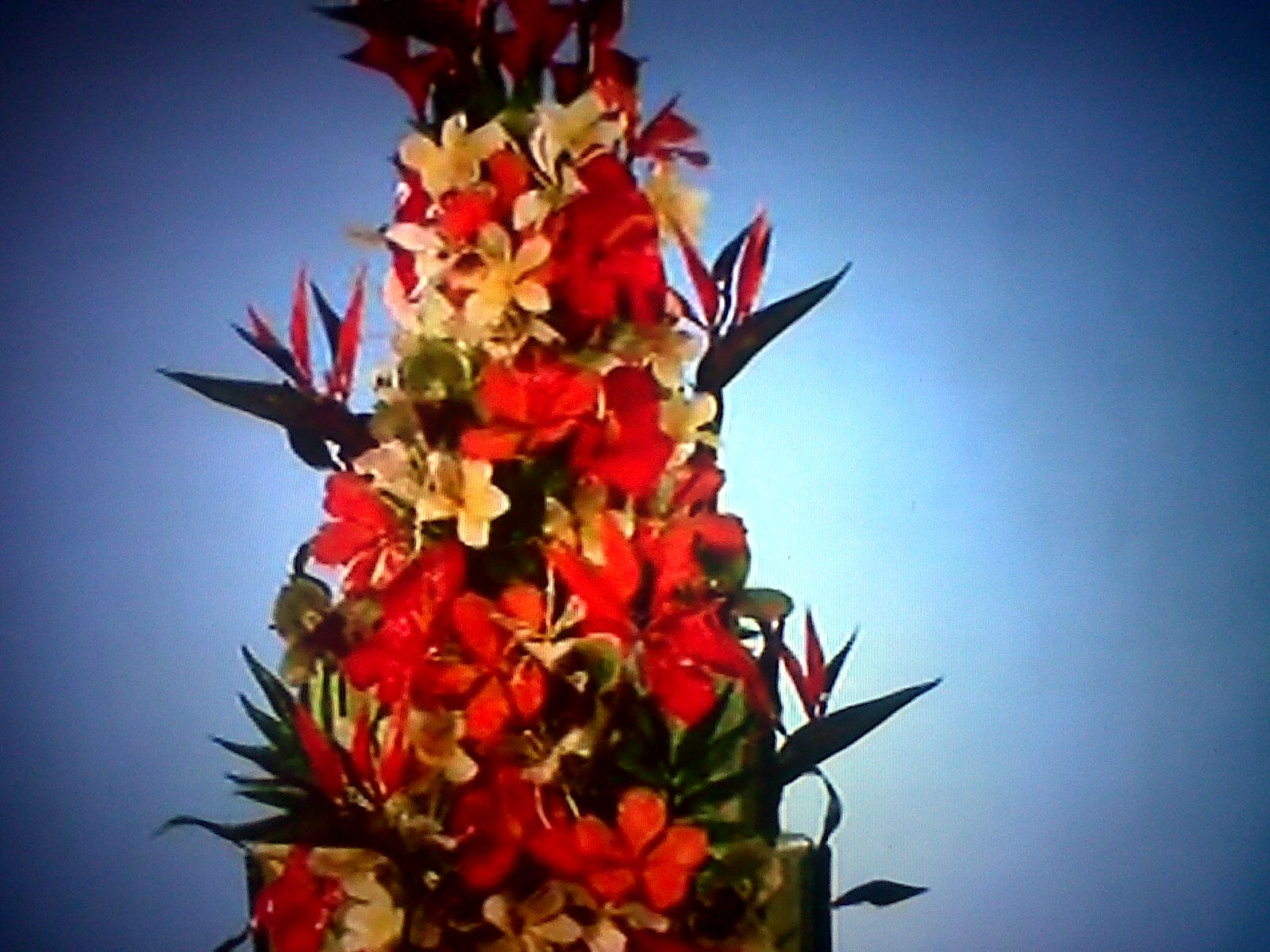 Tropical Flowers Featured On Amazing Wedding Cakes Food Network