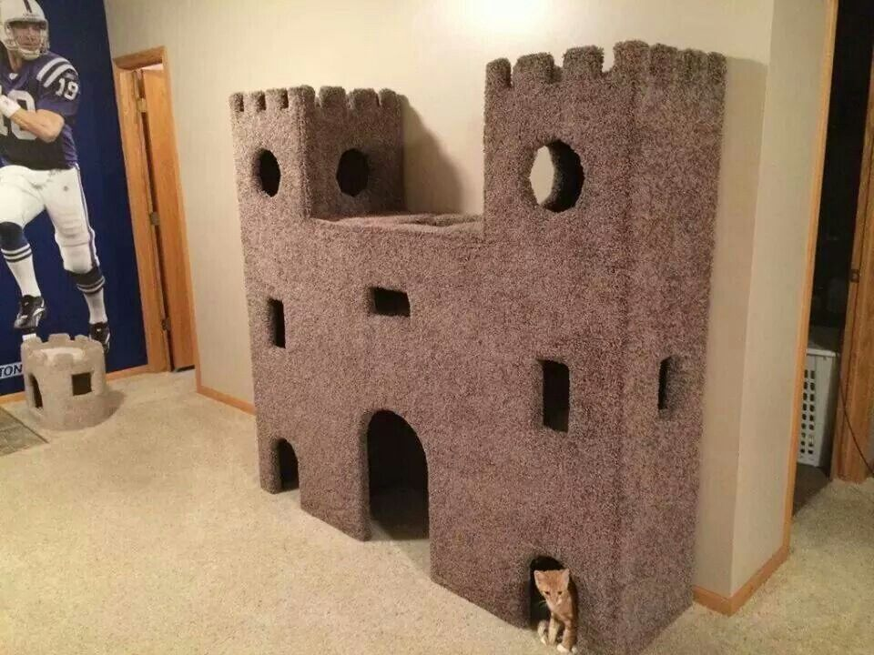Best Cat Tower Ever