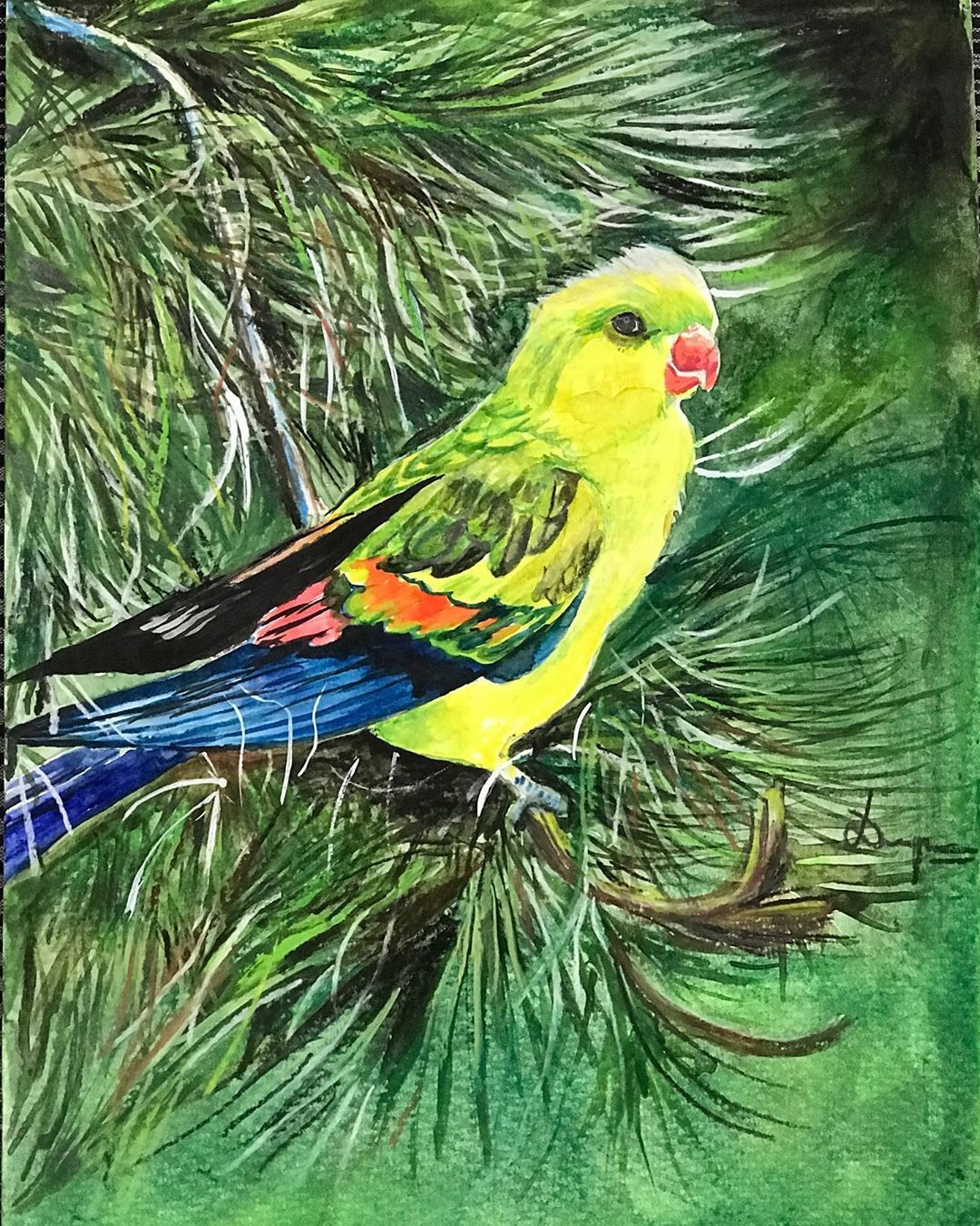 """Deepa K Rao on Instagram: """"A bright yellow parrot in watercolour and pastels #deepaart .. .. .. .. .. .. .. .. #watercolourillustration #watercolour#watercolourbirds…"""""""