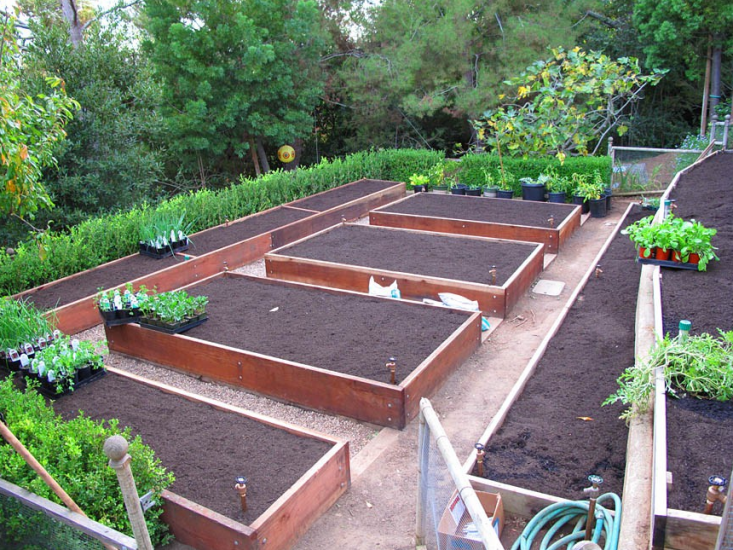 Photo of Hardscaping 101: Drip Irrigation – Gardenista
