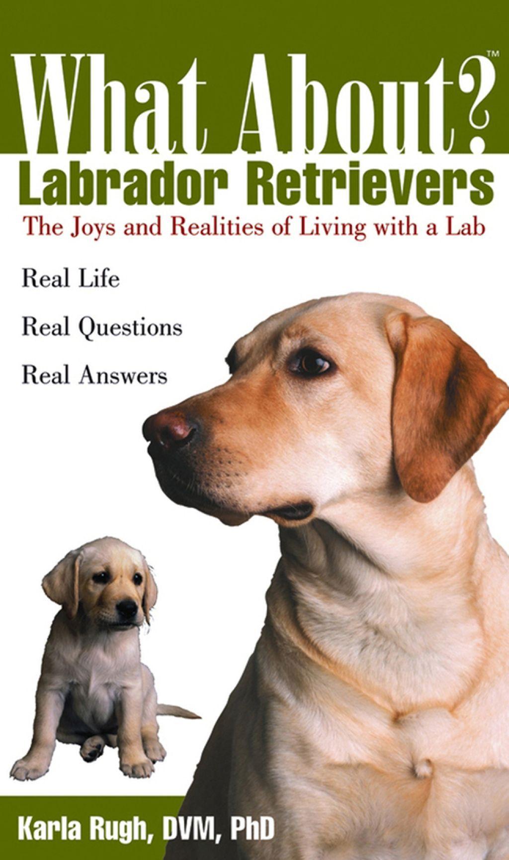 What About Labrador Retrievers (eBook) Labrador
