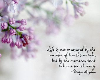 Purple Lilac Photograph, Inspirational Quote, Maya Angelou Quote, Purple Spring  Flowers, Cottage Chic Home Decor