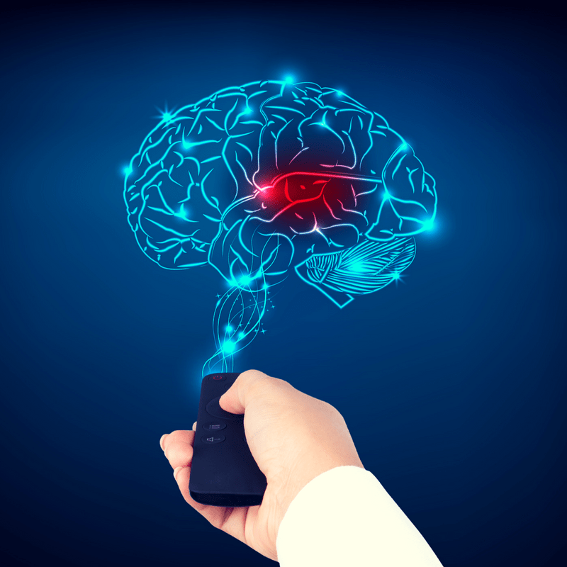 Two Primary Ways to Drive Brain Neuroplasticity  The Best Brain Possible Every second of every day your brain is changing through neuroplasticity There are two primary wa...