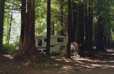 Crescent City Redwoods Koa Camping In California Crescent City Ca Camping Hacks Crescent City