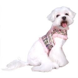 Posh Puppy Boutique Designer Dog Clothes Puppy Collars Dog Harness